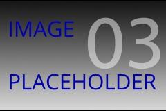 Placeholder-03