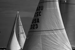 sailboat race Corpus Christi Tx